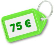 Precio del curso 75 euros