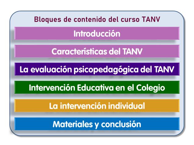 Bloques de contenido del curso sobre el TANV organizado por AMALER